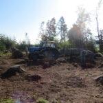 Úklid větví v obecních lesích